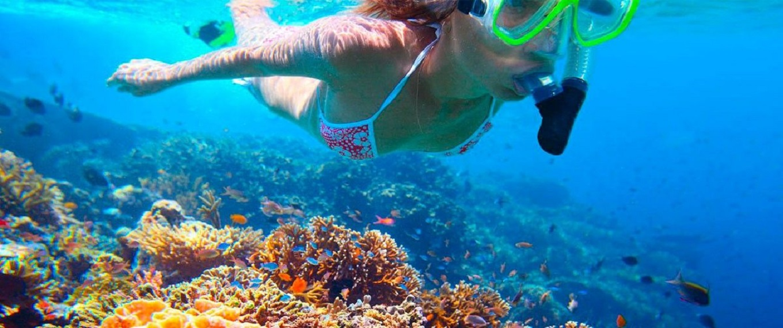 Snorkeling-Scuba-Diving